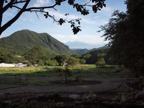 黒富士農場