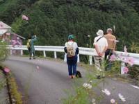 tsubayama2