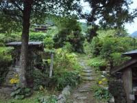 tsubayama4
