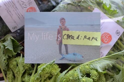僕が最近SNSで「I am not ABE !」などとホザいたのをみてこんな絵葉書つけてよこすし(笑)。これしかもお顔本人クりそつ。ウケた~
